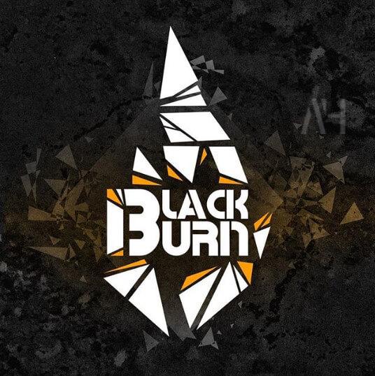 Производитель Black Burn